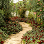 Which Material is Best for Your Garden Paths?