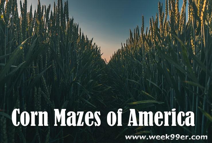 Corn Mazes of America