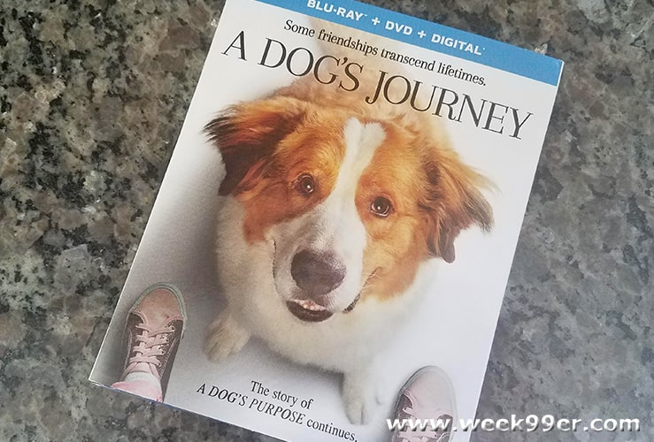 A dog's journey at home release review