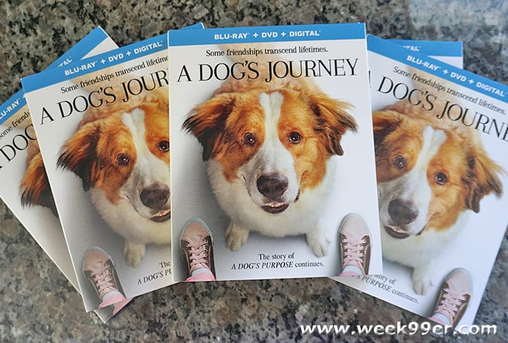 A dog's Journey Giveaway