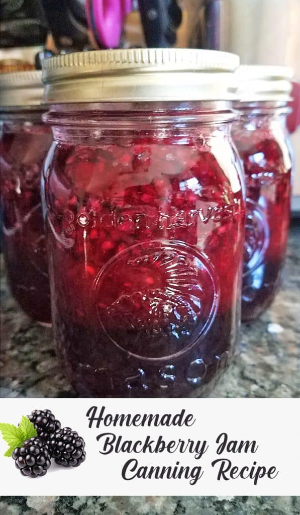 how to make blackberry jam at home