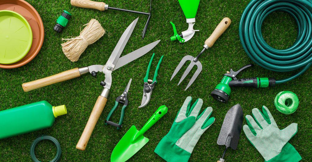 A Beginner's Guide to Gardening Tools