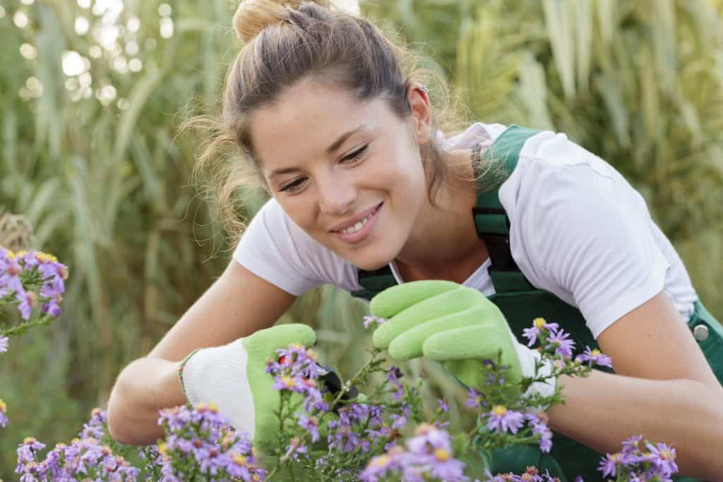 Tips to Becoming a Better Gardener