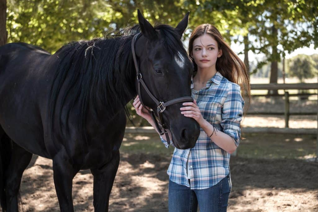 Black Beauty is Coming to Disney+
