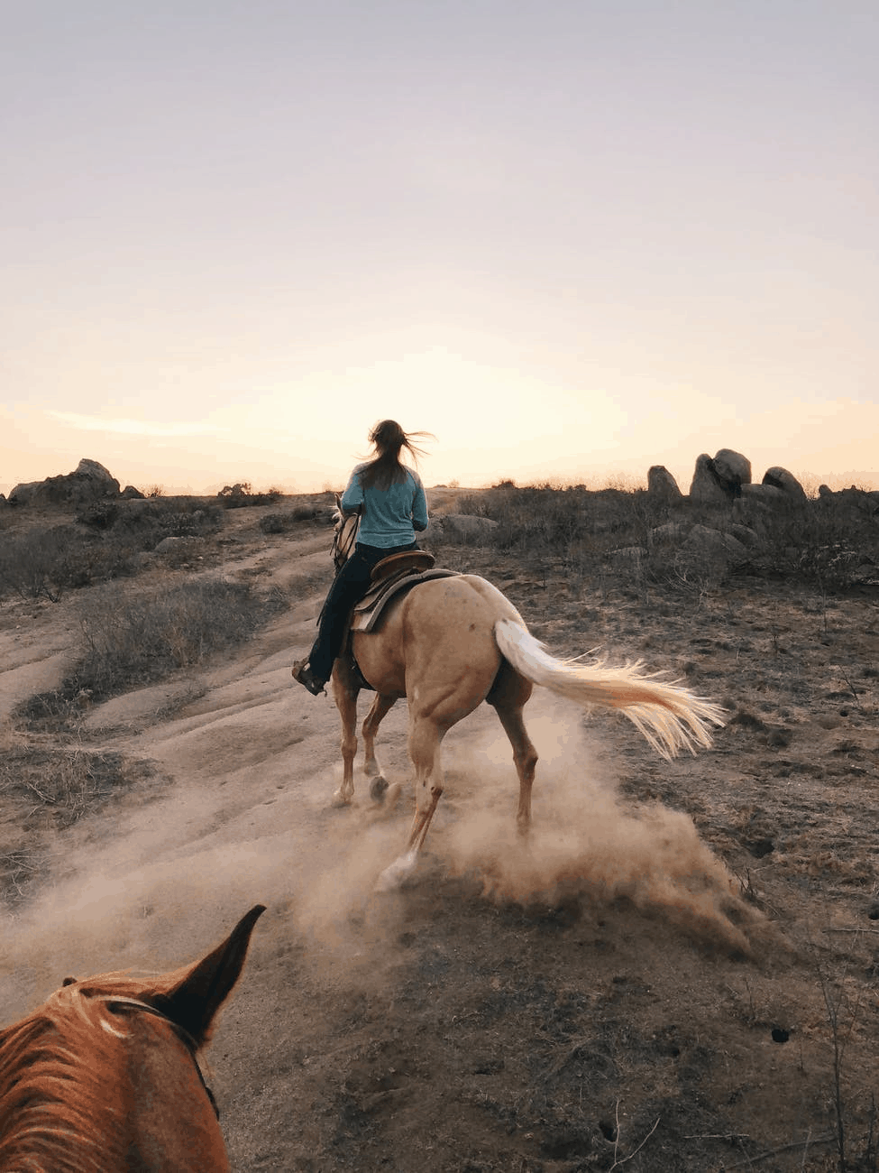 The Best Way To Prep For An Epic Horse Trek