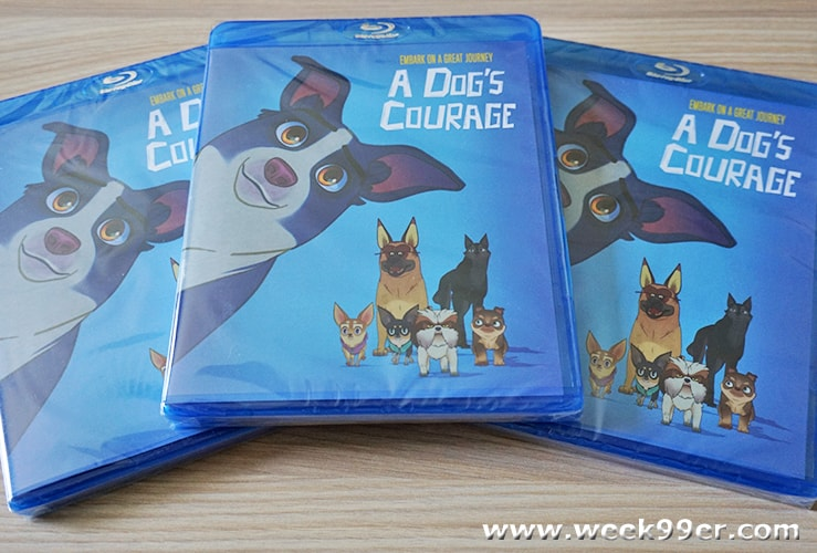 A Dog's Courage DVD Review and Giveaway
