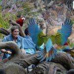 The Magic of Disney's Animal Kingdom Comes to Disney+