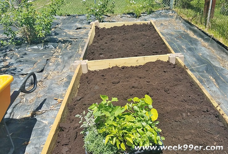 How to Build Your Own Raised Bed Gardens