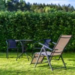 5 Ways to Increase Privacy in Your Yard
