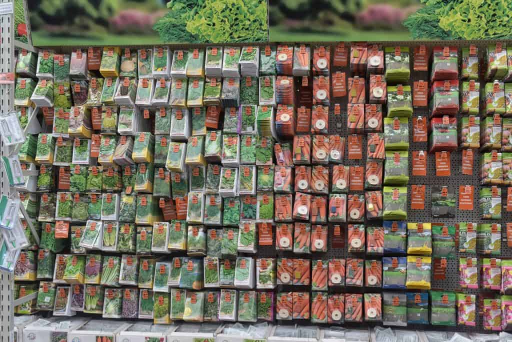 How to Choose the Best Seeds for Your Vegetable Garden