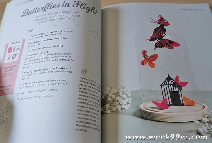 Little Paper Universes Book Review
