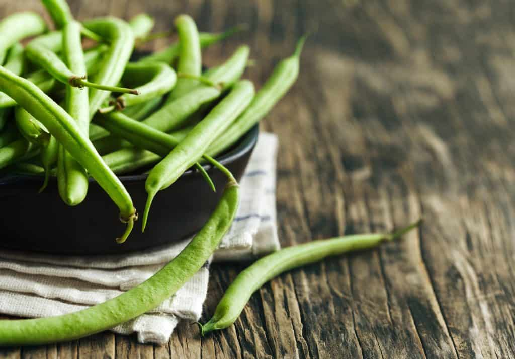 Growing Green Beans in a Container Garden
