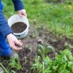 Making Your Own Organic Fertilizer