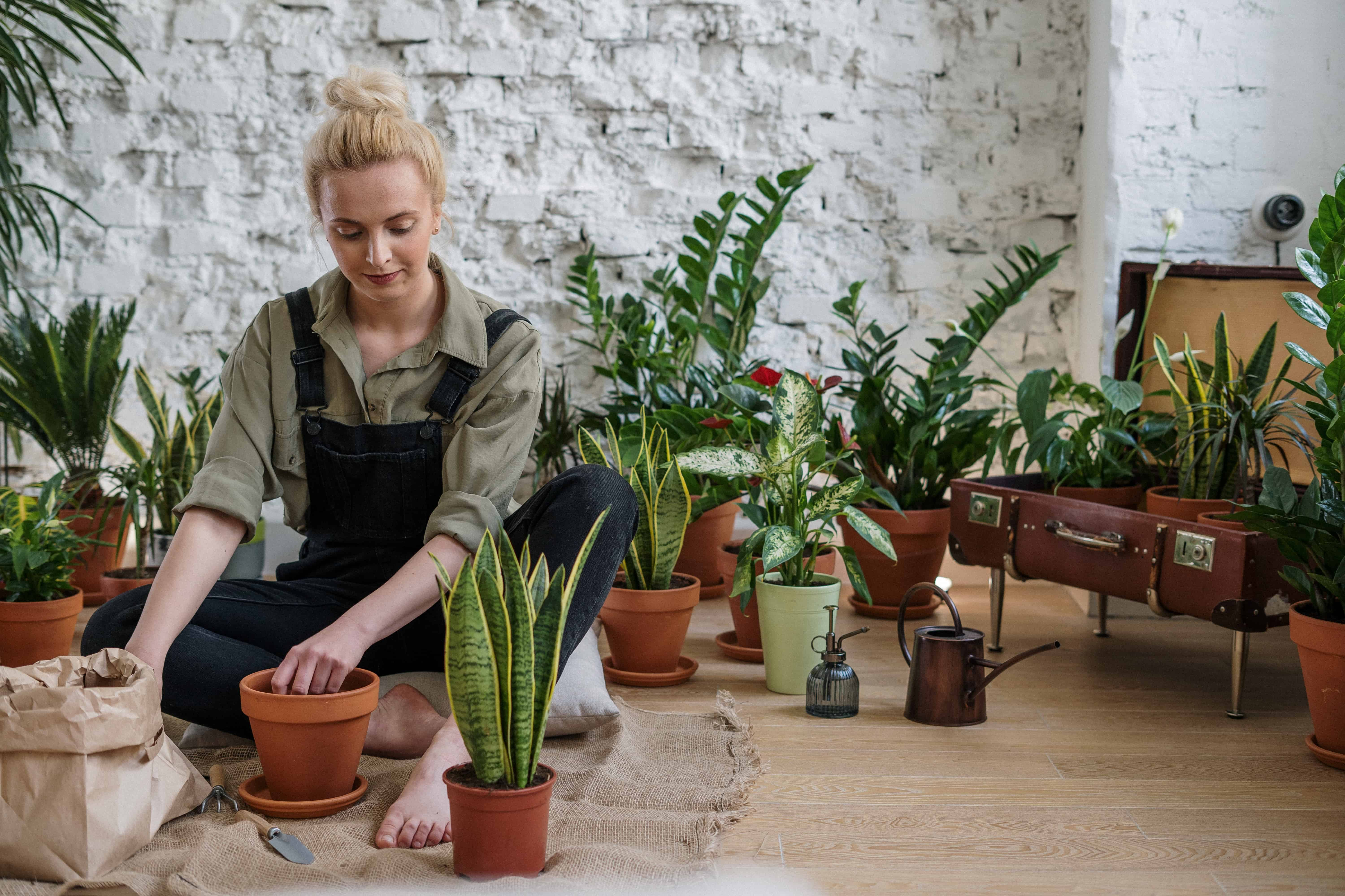 What Is Dirt Therapy? How it works and who it helps