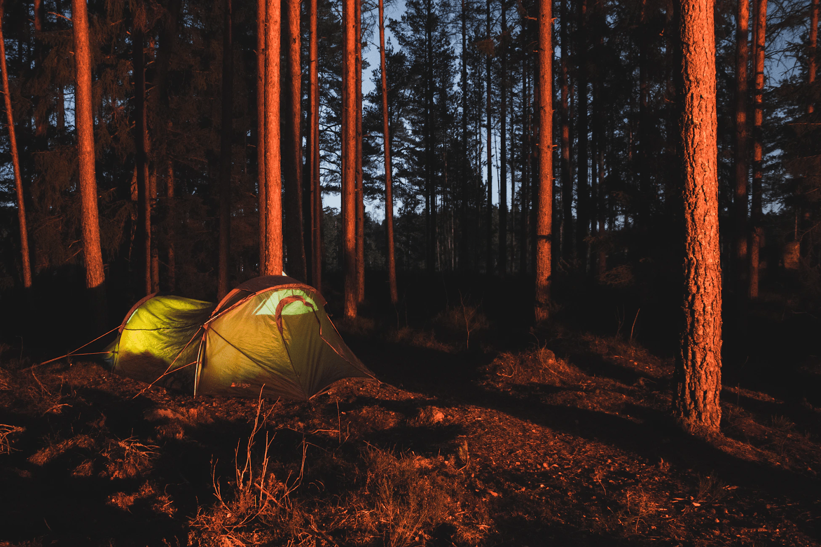 Do You Have What It Takes To Go Wild Camping?